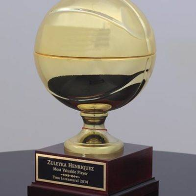 0022336_champions-basketball-trophy_600-400x400 Home